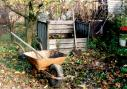 miss-kompost-sutaz-priatelia-zeme-spz-5.jpg